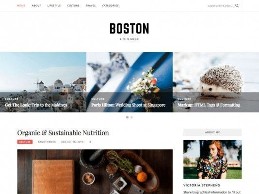 boston-free-WordPress-templates
