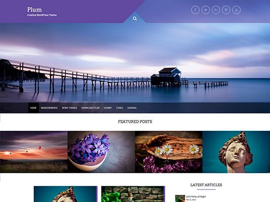 temas-responsives-gratis-wordpress-Plum